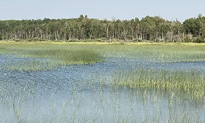 Iroquois Lake development faces major objections